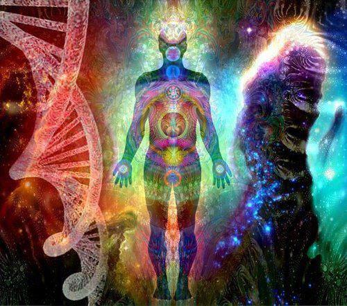 Human Evolution Image